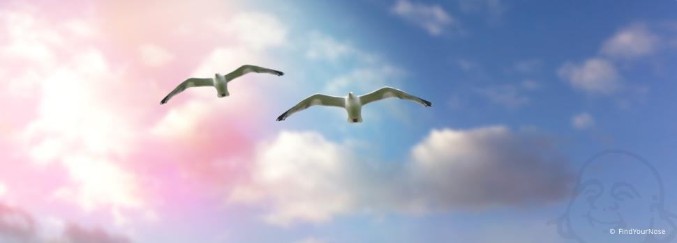 Freiheit! In der Liebe individuell bleiben
