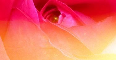 Orgasmus ist mehr als ein Nieser, er ist göttlich. Über meditative Sexualität.