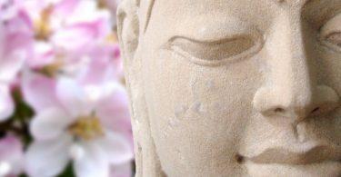 Warum jeder Mensch Meditation braucht