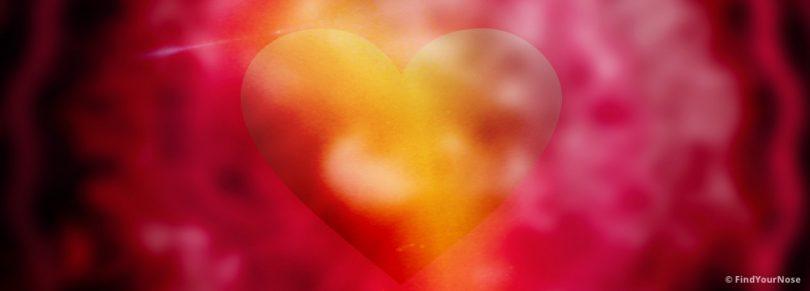 Die Wissenschaft des Herzens in der Meditation