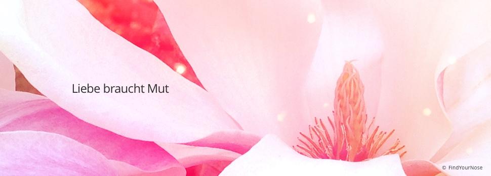 Nur die Mutigen können lieben - Osho Zitat