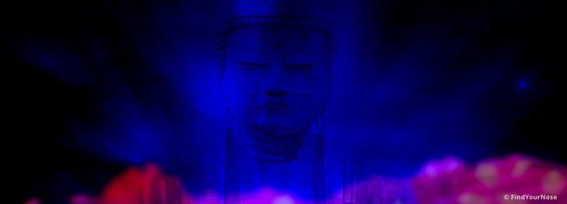 Meditation bedeutet, völlig nackt zu sein