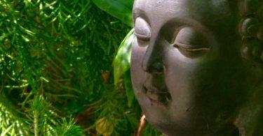 Was bedeutet es zu meditieren?
