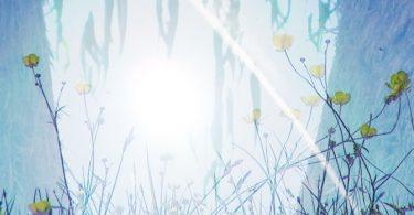 4 Meditationsübungen, dieBegrenzungen auflösen