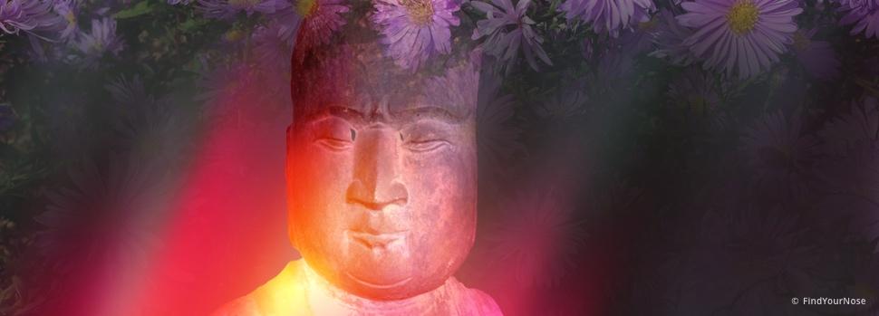 Können Meditation und Weisheit übertragen werden?