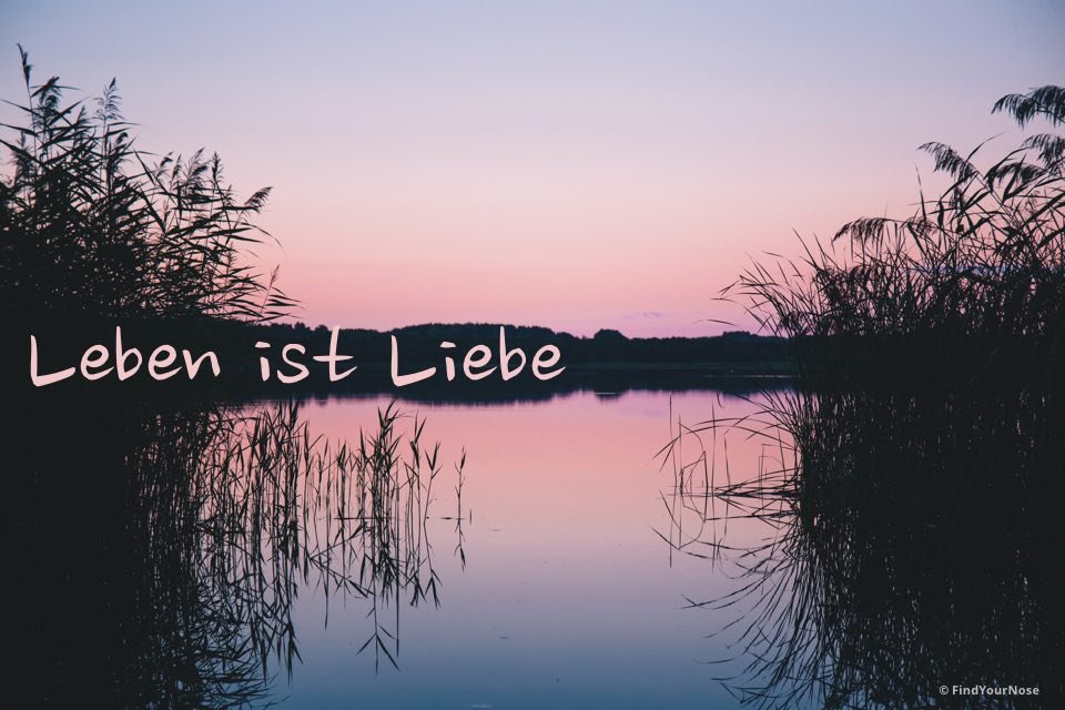 Osho Gedicht: Leben ist Liebe