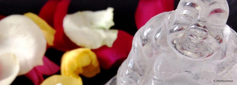 Sekunden Meditationen von FindYourNose bestellen