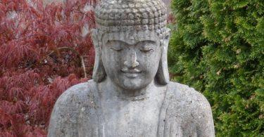 Braucht es einen Meister zur Meditation?