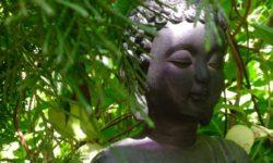 Meditation 'Ich bin' - die große Verwandlung