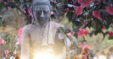 Welche Meditationen gibt es?