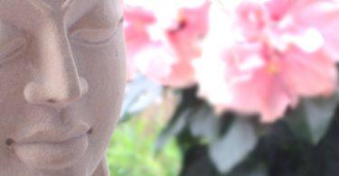 Meditation ist ein sexuelles Phänomen