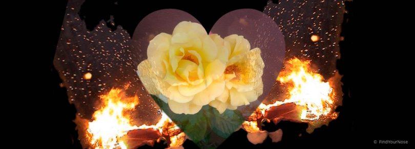 Bleibe beim anfänglichen Feuer - über meditative Sexualität