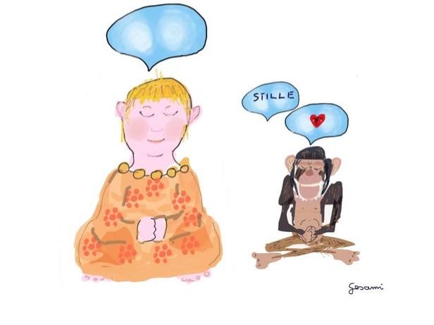 Meditationserfahrungen2