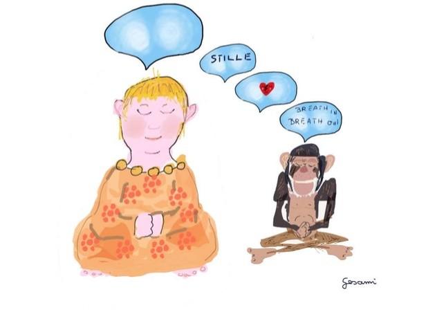 meditationserfahrungen3