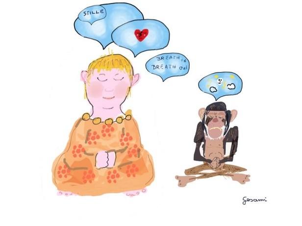 Meditationserfahrungen4
