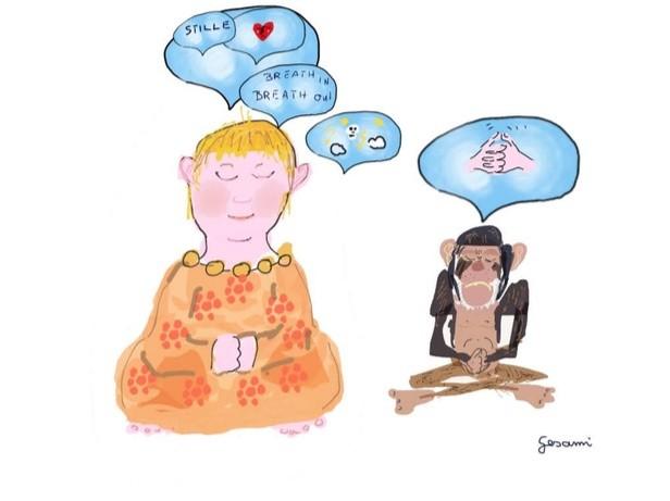 Meditationserfahrungen5