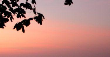Abends sterben – morgens leben - Osho Meditation