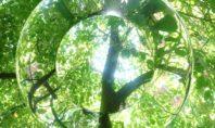 Beziehe alles mit ein – tantrische Meditation für den fühlenden Typ Mensch