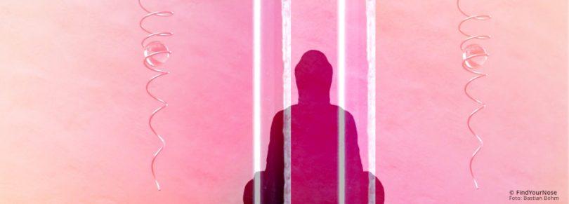 Was jemand verpasst, der nicht meditiert: die Vertikale