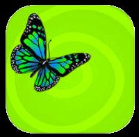 icon-zentrierung-app