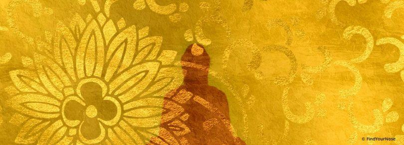 Fragst du dich, ob deine Meditation Fortschritte macht?