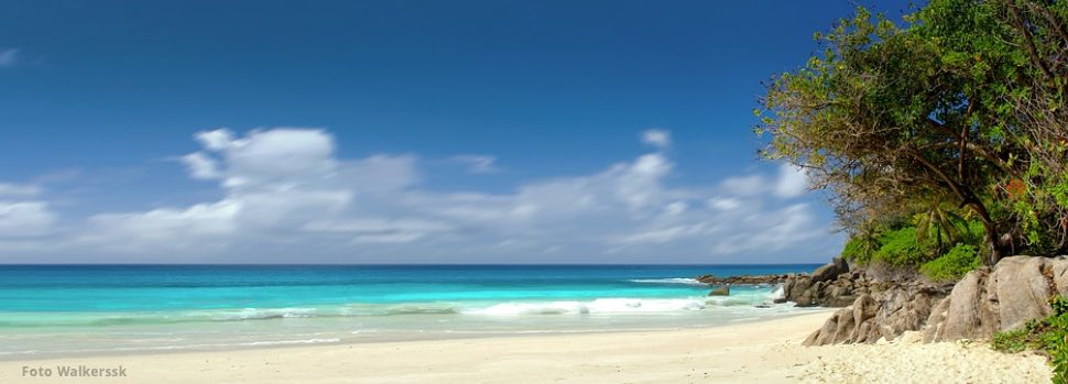Tiefenentspannung ist das Paradies – Osho Zitat