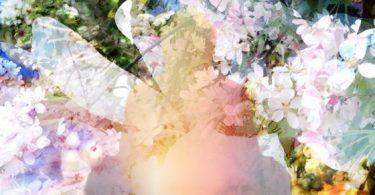Warum meditieren? 99 Wirkungen von Meditation