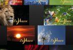 10 meditative Grußkarten 'Zuhause, im Leben' – das ideale Geschenk für Meditierende