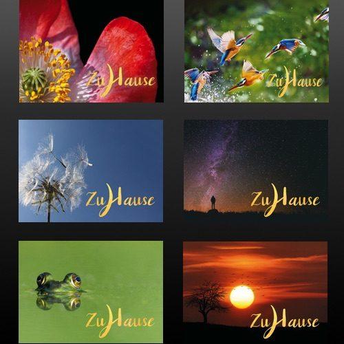 6 meditative Grußkarten 'Zuhause, im Leben' – das ideale Geschenk für Meditierende
