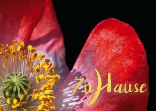 Meditative Grußkarte / Postkarte 'Zuhause, im Leben' – rote Blüte
