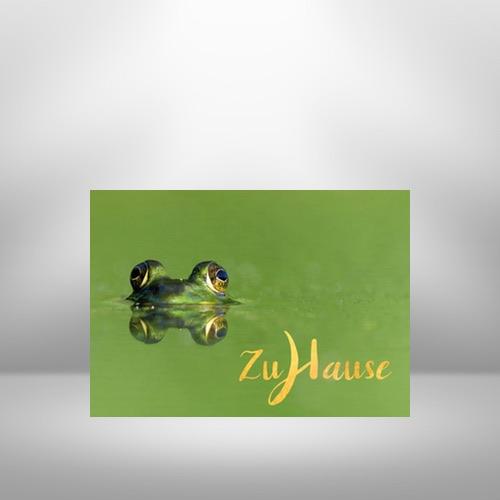 Meditative Grußkarte / Postkarte 'Zuhause, im Leben' – Frosch