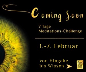 4.meditations-challenge-sidebar.jpeg
