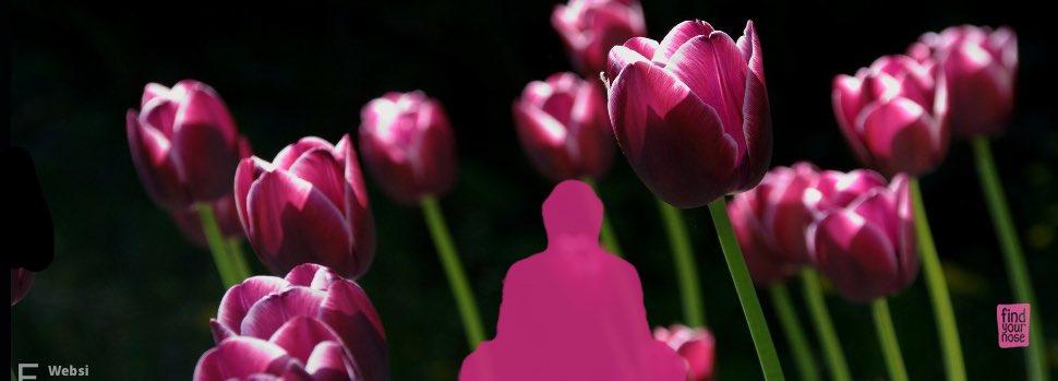 10 Mythen über Meditation