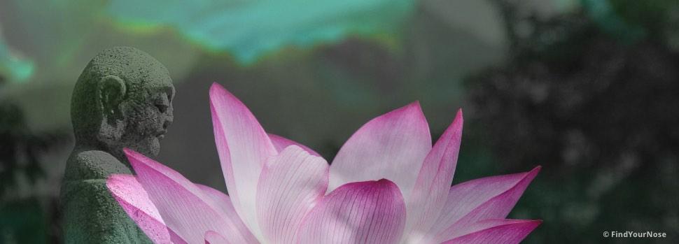 Der ganze Trick von Meditation: unbeschäftigt sein