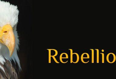 Wochenmeditation Rebellion, 7 Tage meditieren und rebellieren