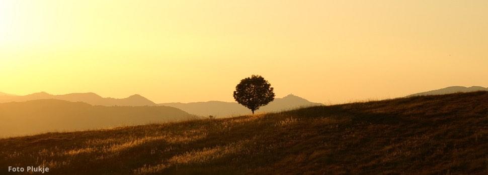 Quizfrage: Meditierst du lieber alleine oder mit anderen zusammen?
