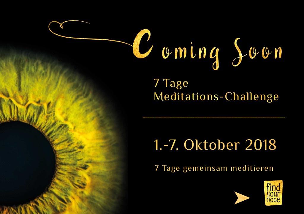 7. Meditations-Challenge