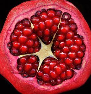 Die 5 Körper des Menschen sind wie Samen – Osho Zitat