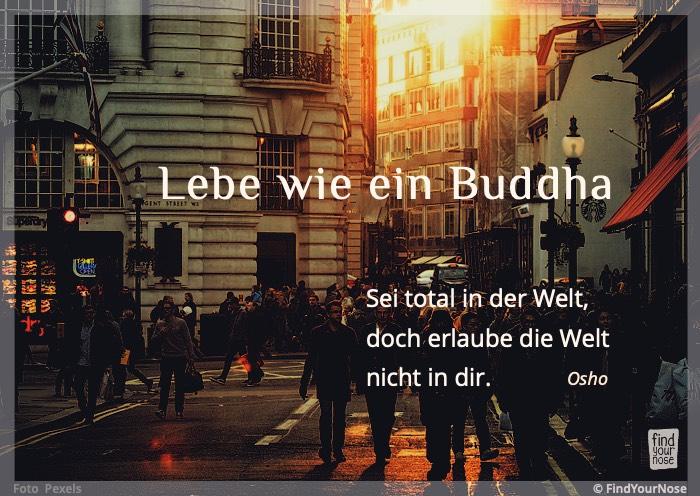 Lebe wie ein Buddha