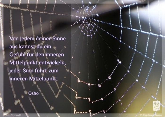 Bilderzitat: über die Sinne zum inneren Mittelpunkt