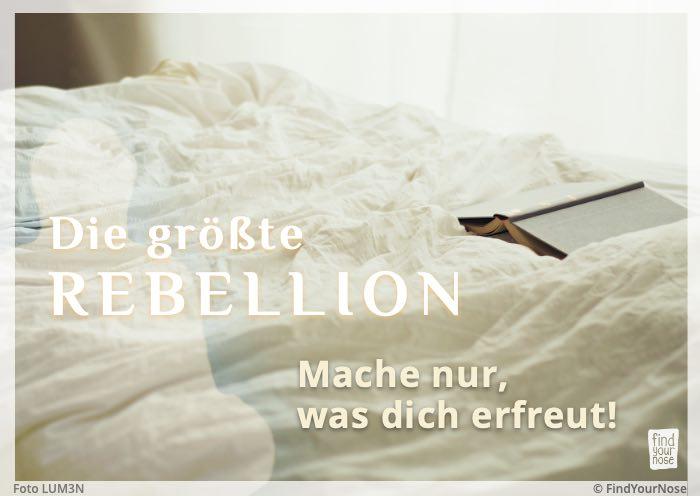 Die größte Rebellion: Mache nur, was dich erfreut