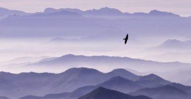 Meditation, wenn du in der Krise steckst