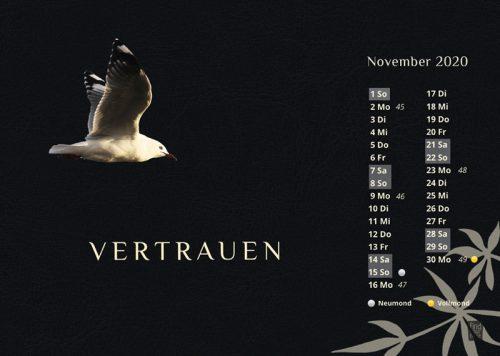 Tischkalender 'Glücklich' fürs Herz von FindYourNose