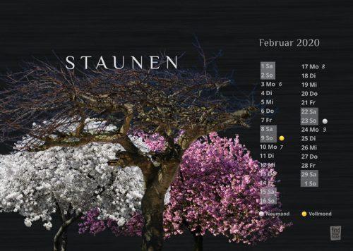 Tischkalender Glücklich, Kalender fürs Herz und Meditation 2020