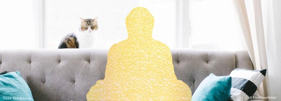 In Quarantäne? Meditationen und 3 Tipps