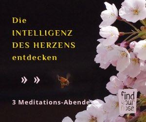 topnose-intelligentes-herz-meditationsabende-2.jpg