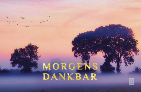 Morgens dankbar – alterslos Meditationskarten